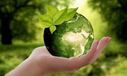 6 Meaningful Ways To Celebrate Earth Day