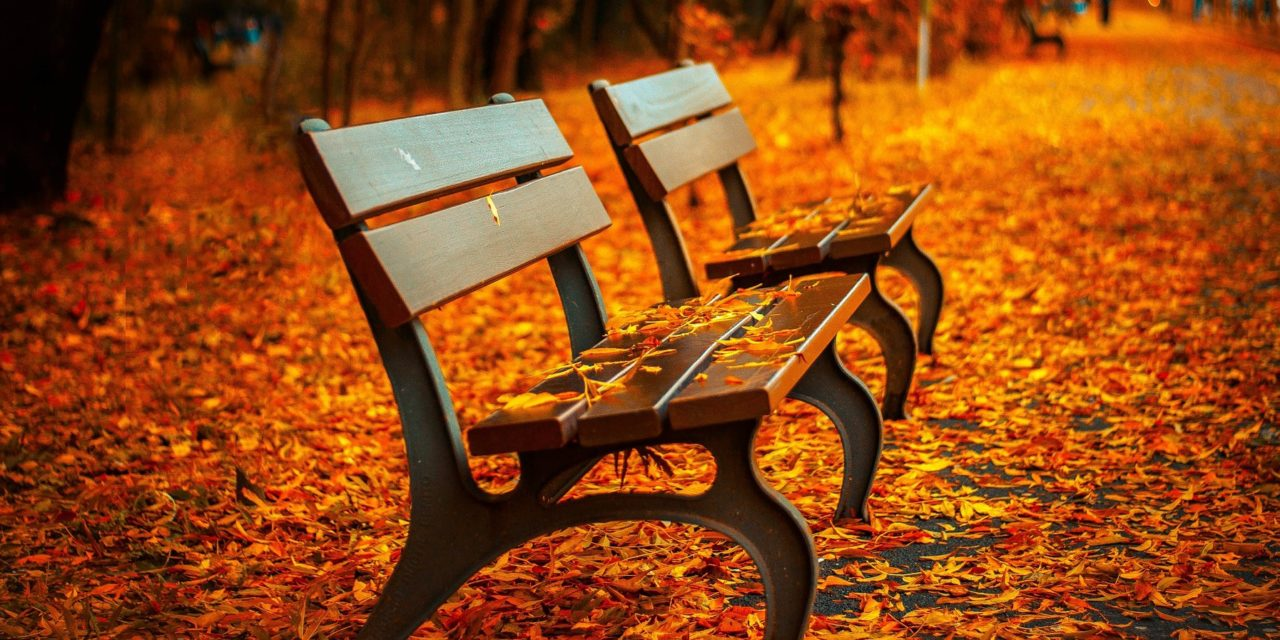 7 Facts About Autumn You Probably Did Not Know