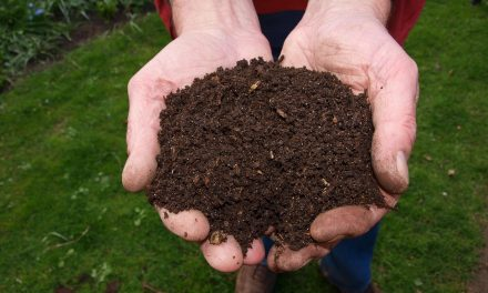 The Simple Rules Of Composting