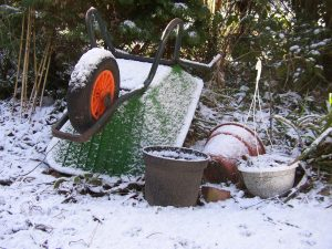 7 Steps To Winterizing The Garden