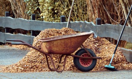 Mulch Mistakes To Avoid