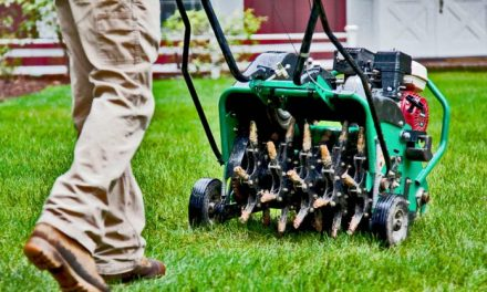 Why Core Aeration Is So Important For Your Lawn