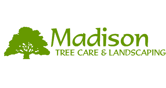Madison Tree Care & Landscaping