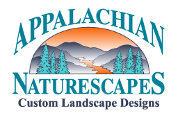 Appalachian Naturescapes
