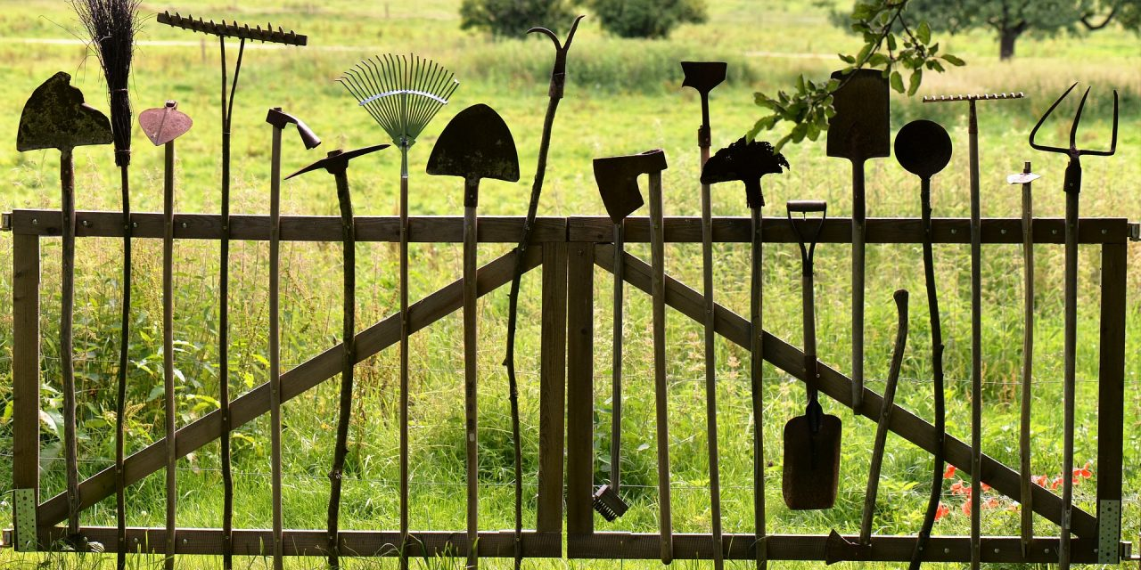 Garden Tool Must-Haves For Beginner Gardeners
