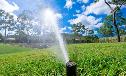 RightPlantz Conversations: Southern Sprinkler Systems of Roswell Georgia