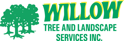 Willow Grove Tree Trimming & Removal
