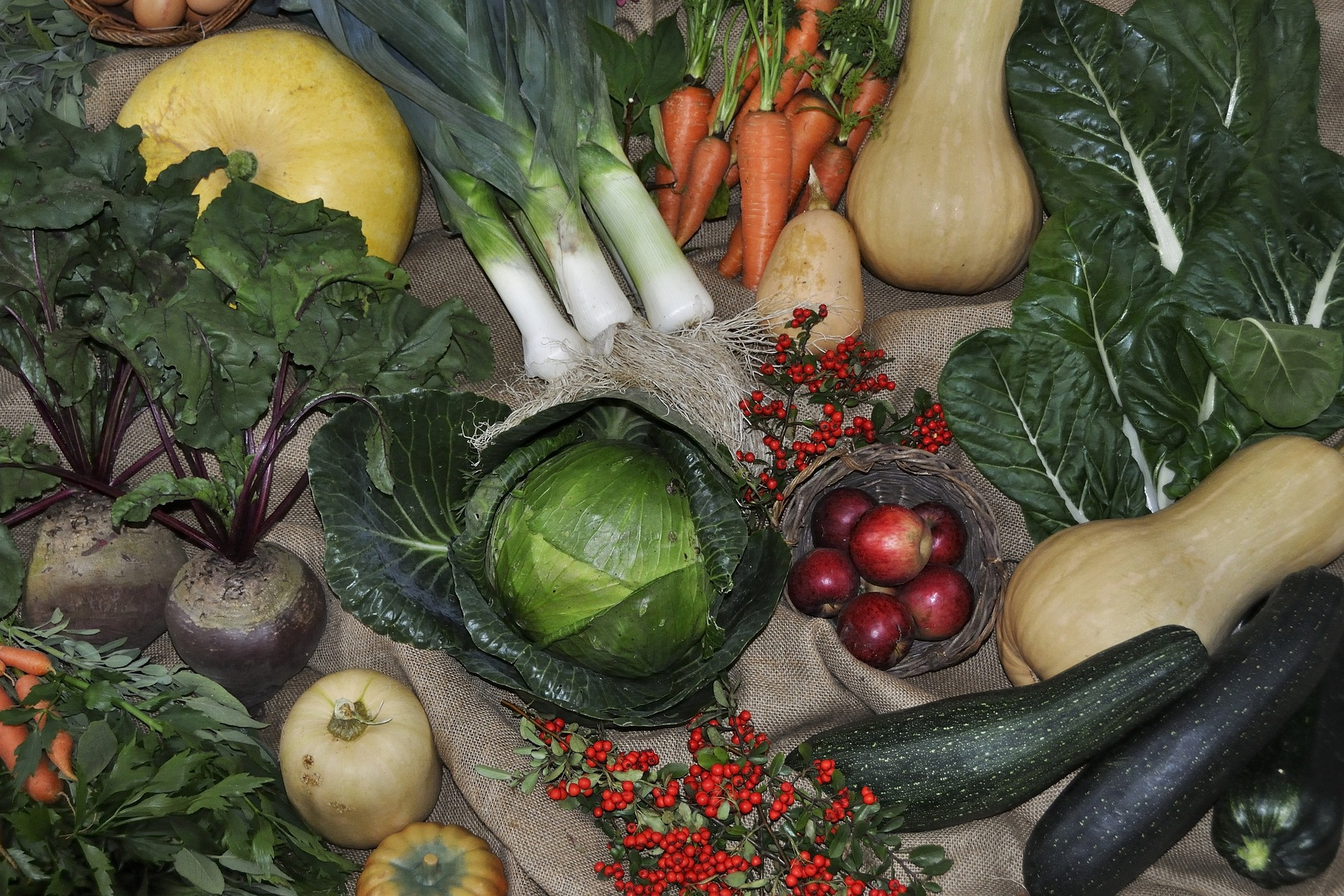 Why You Should Rotate Your Vegetables